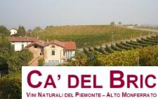 Productor de vinos orgánicos Ca' del Bric